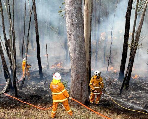 bushfire-assessment-3