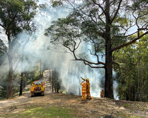 bushfire-assessment-5