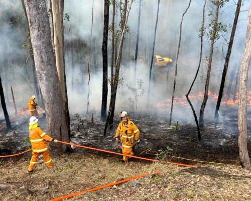 bushfire-assessment
