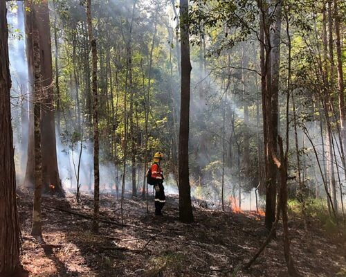 bushfire-assessment-7