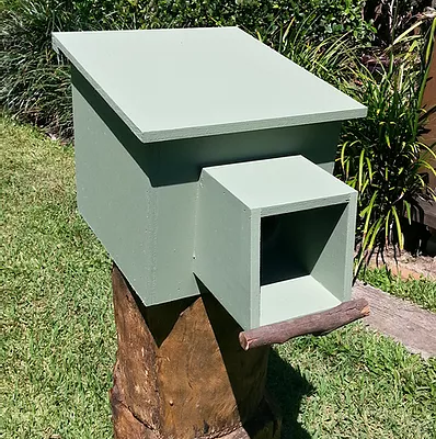 kookaburra3
